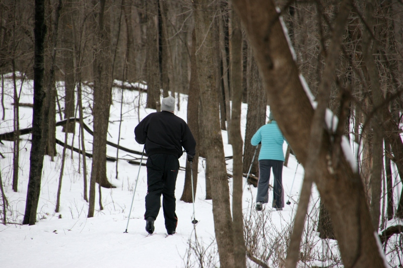 Nature Center, 5 cross country skiers