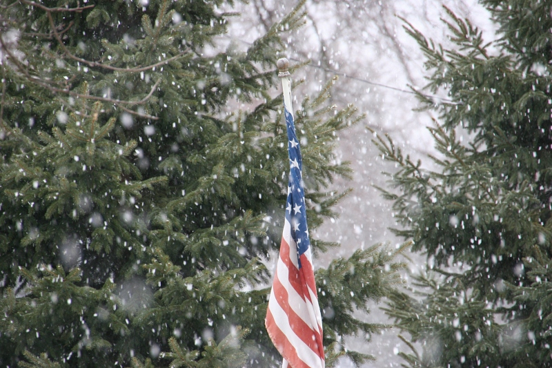 Snow flakes fell fast and furious around noon on Sunday. This shows my neighbor's evergreens and flag.