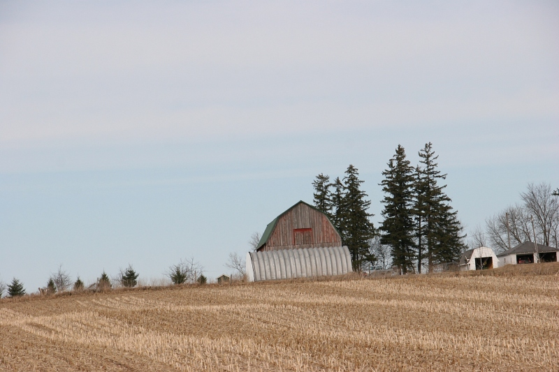 Rural Minnesota, 106 barn and corn stubble