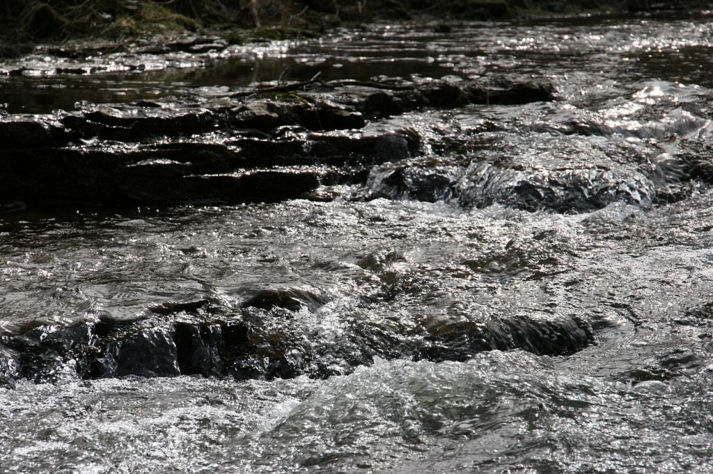 Water rushes over limestone ledges in Wanamingo's Shingle Creek.