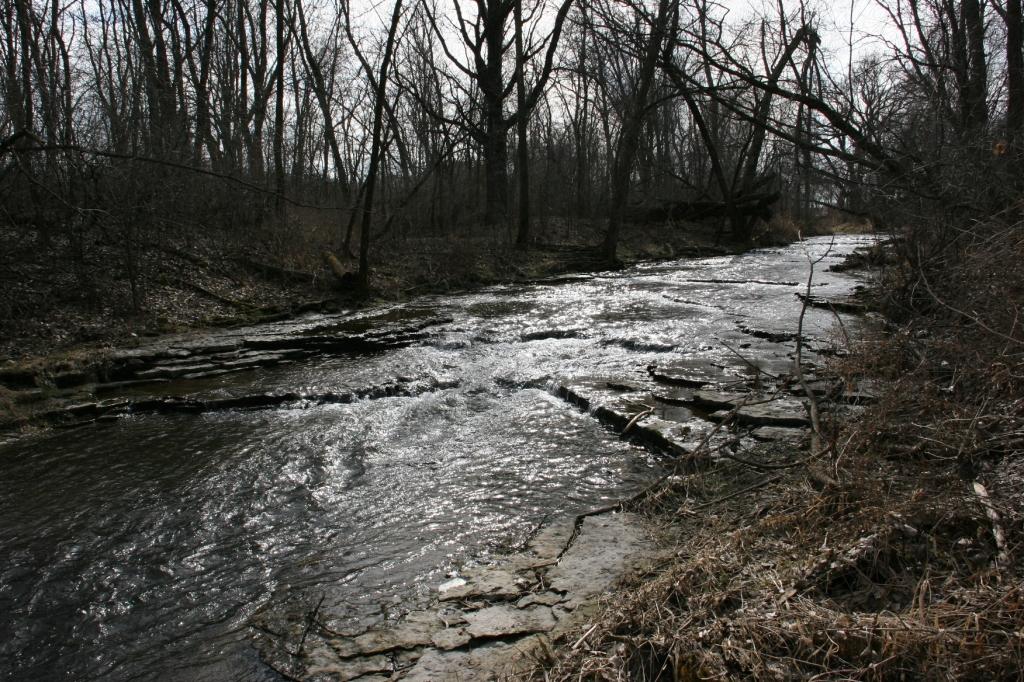 Lovely Shingle Creek.
