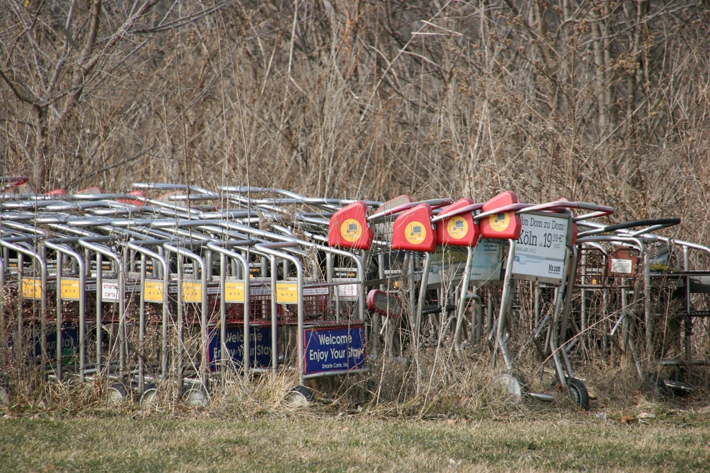 Some of the airport luggage carts still remaining in Wanamingo.