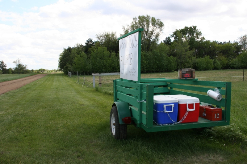 Roadside stand, 94 trailer next to driveway