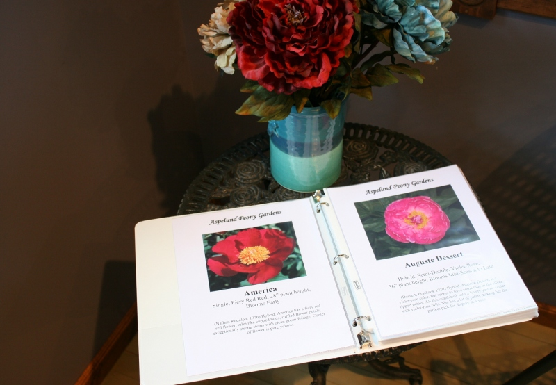 Even though peony blooming season is wrapping up, you can still order peonies by shopping online or viewing the selections in this three-ring binder in the wine tasting room.