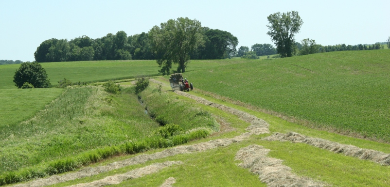 Baling hay, 17 southern Minnesota