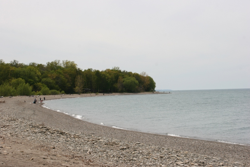 It was a lovely day to be on the beach of Lake Erie.