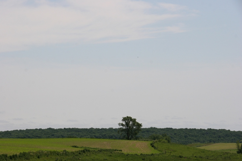 The area around Aspelund is beautiful Minnesota countryside with a mix of fields and woods, flatland and hills.