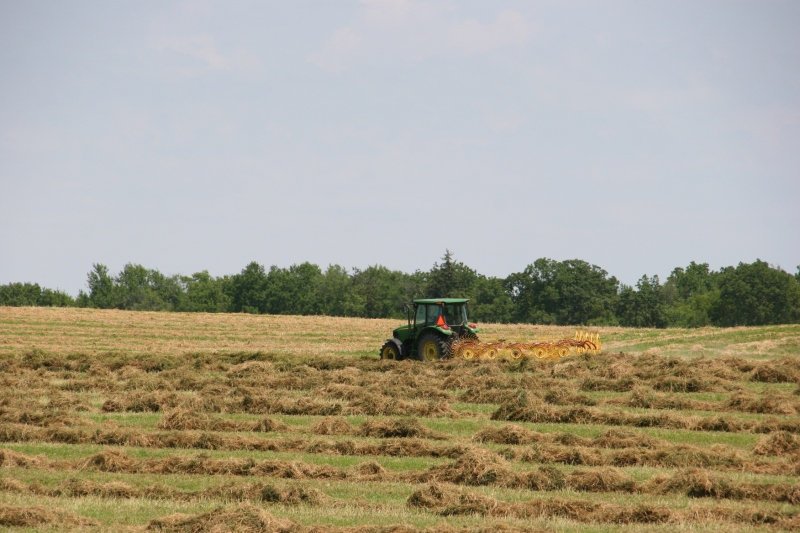 Making hay on the outskirts of Aspelund.