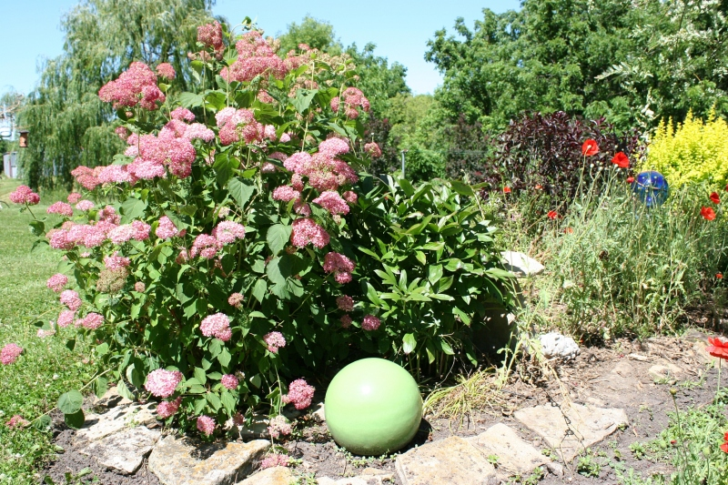 Balls add a playfulness to perennial beds throughout the landscaping.