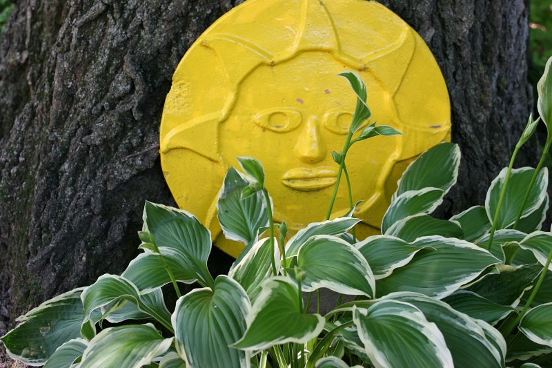 The sun sculpture bursts color into the shade.