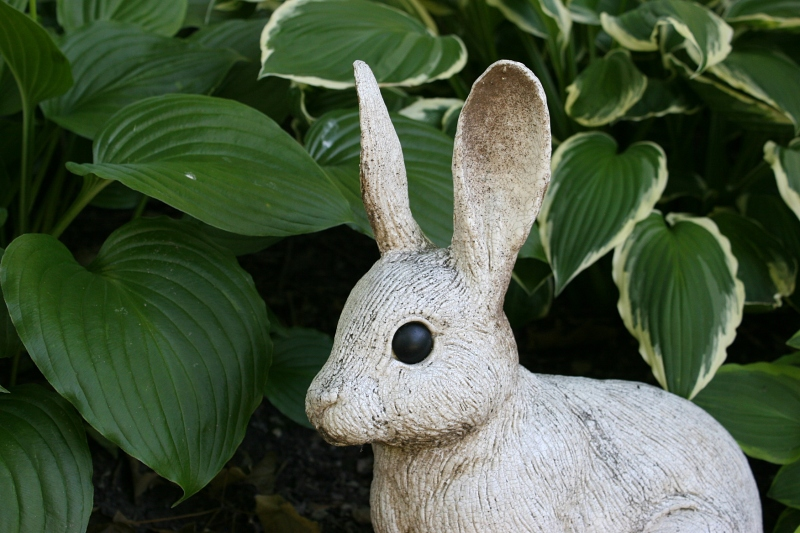 Another of my favorite sculptures tucked by the hosta.