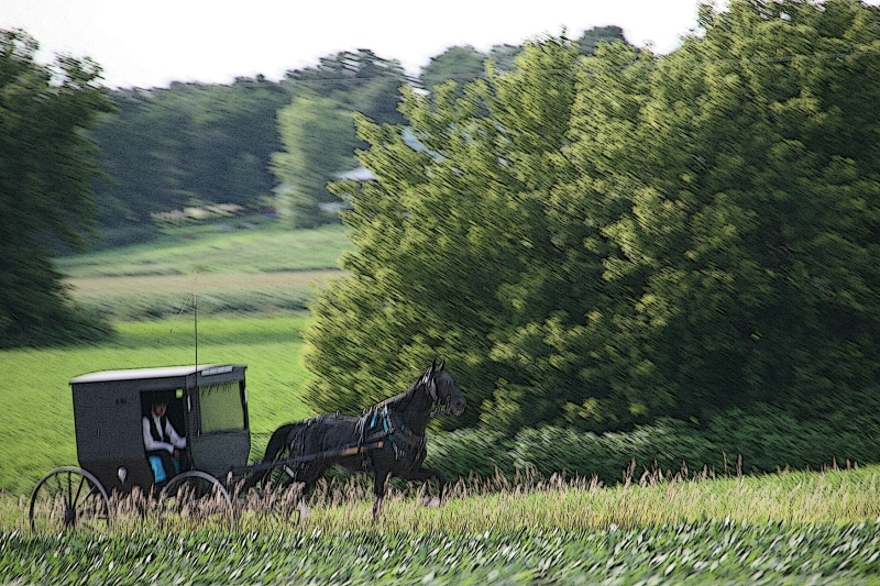 All motion, our van traveling at 70 mph and the Amish buggy much slower.