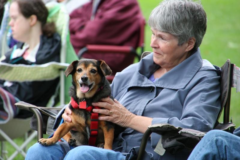 Band concert, 50 dog on lap