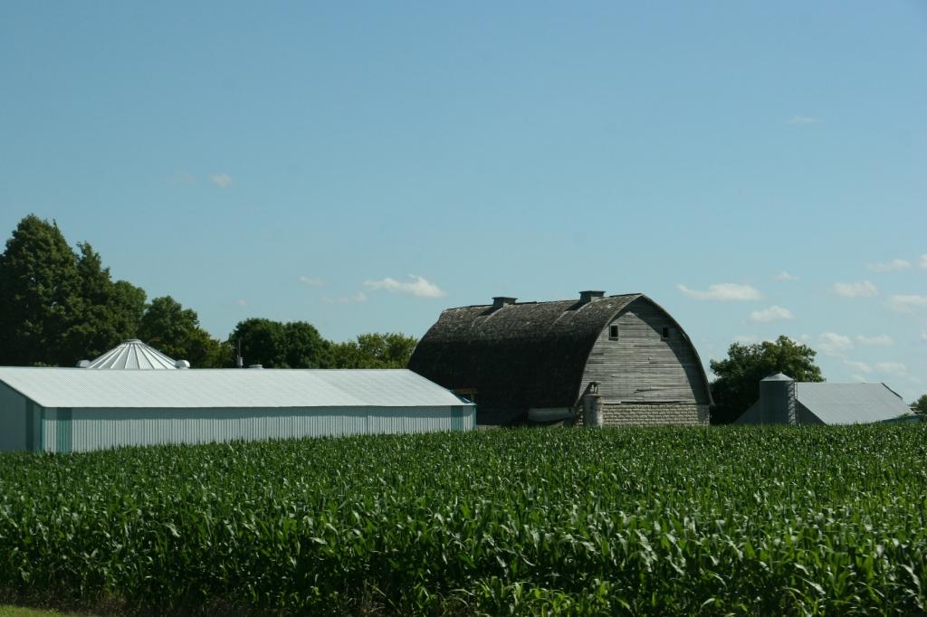 Barn, 109 east of Wabasso along US 71