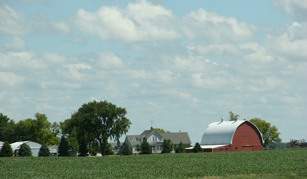 Barn, 142 farm site between Olivia and Wilmar