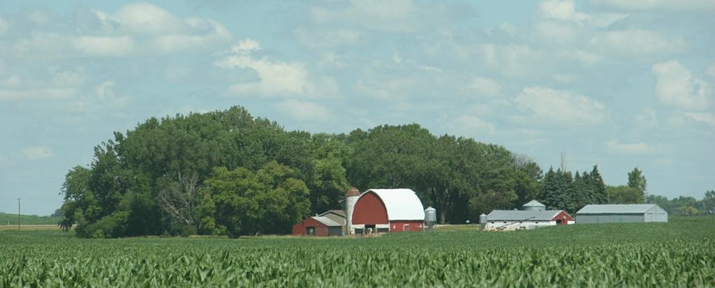 Barn, 144 farm site between Olivia and Wilmar