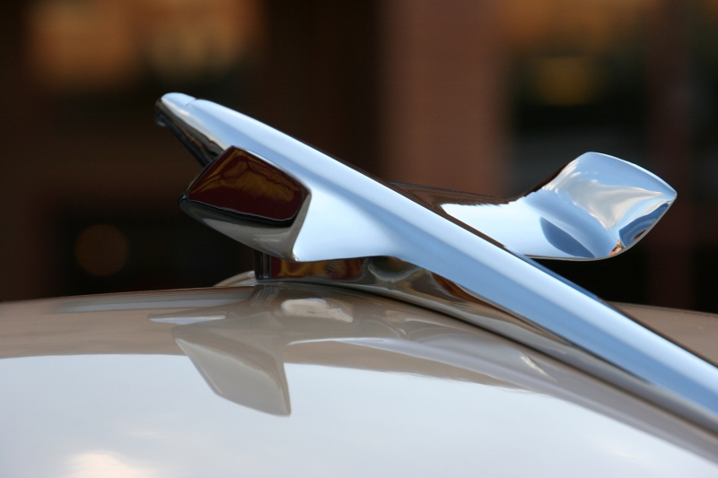 The sleek lines of a jetliner hood ornament drew my artistic attention.
