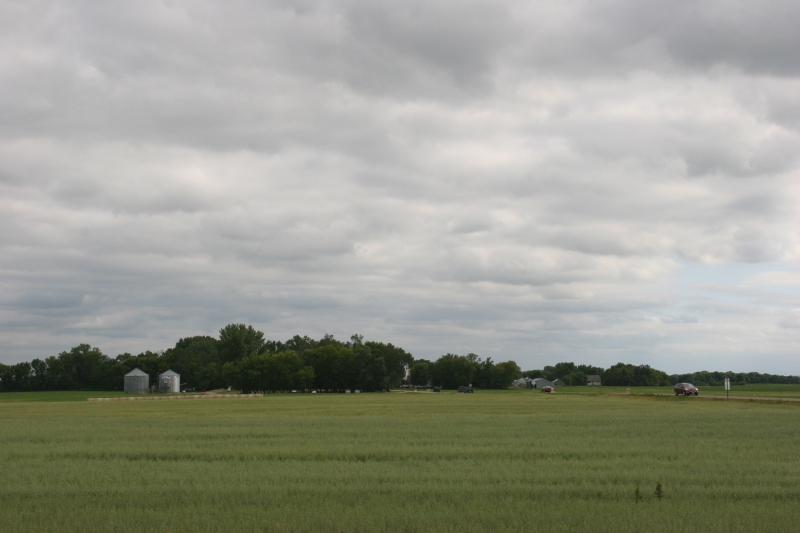 Looking toward the festival site among farm fields.