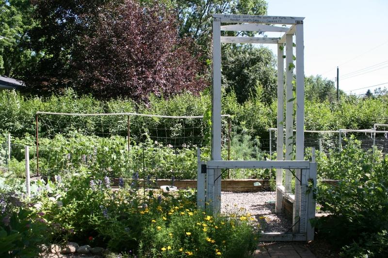 Lawson garden, 138 garden