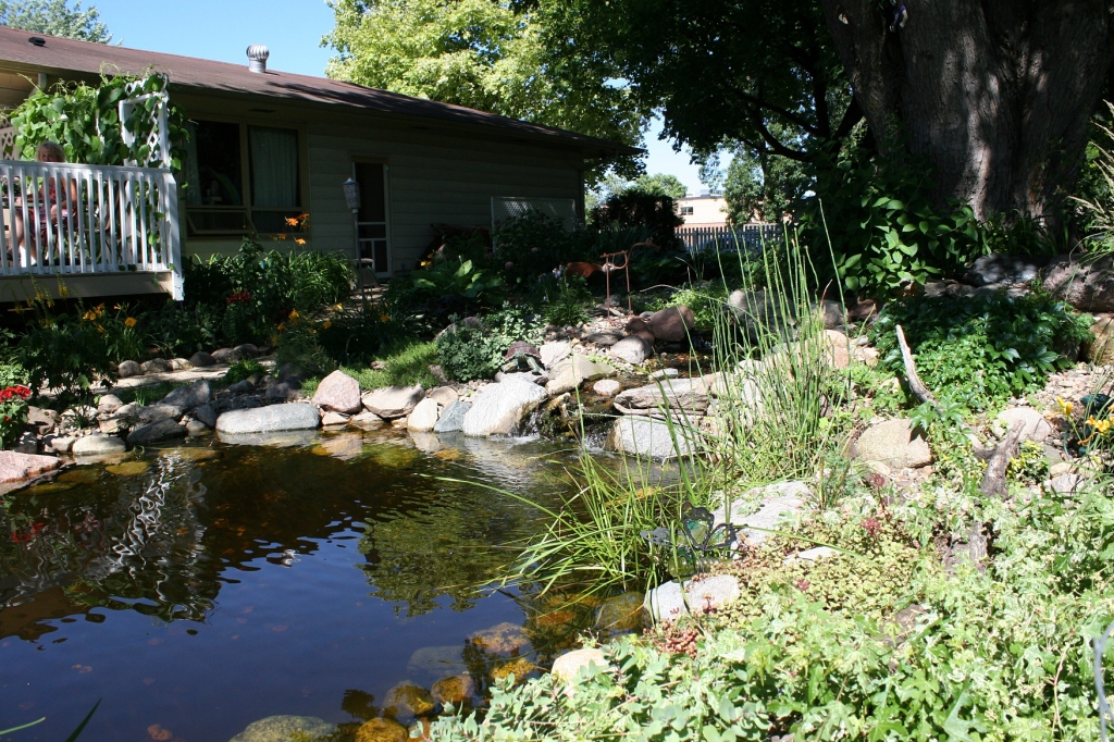 A stream/waterfall/pond is a backyard focal point.
