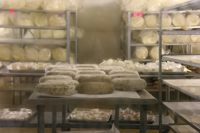 Again, through a window, visitors view aging cheese wheels.