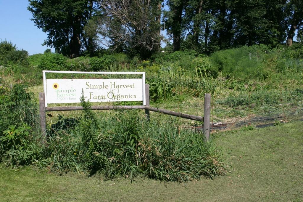 Simple Harvest Organic Farm, 8 Simple H sign