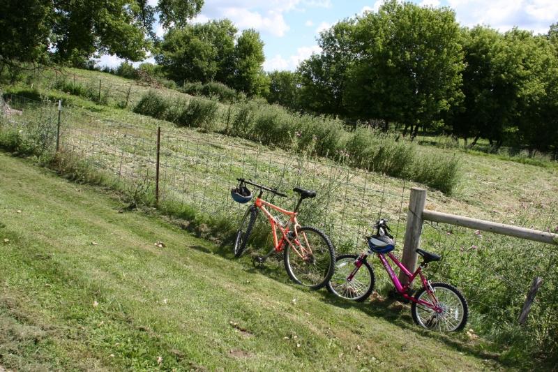 Simple Harvest Organic Farm, 81 bikes