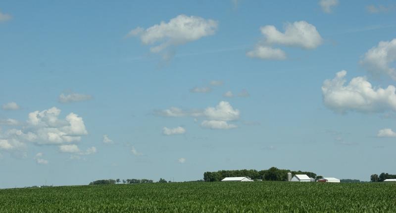 Sky in sw MN, 7 big sky & farm site
