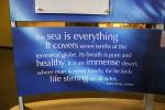Exhibit on water, #23 the sea isquote