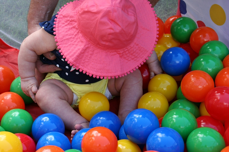 Balls, purchased for a human game of Hungry Hungry Hippos, proved popular with the kids. Here four-month-old Izzy doesn't know quite what to do when set among the orbs.