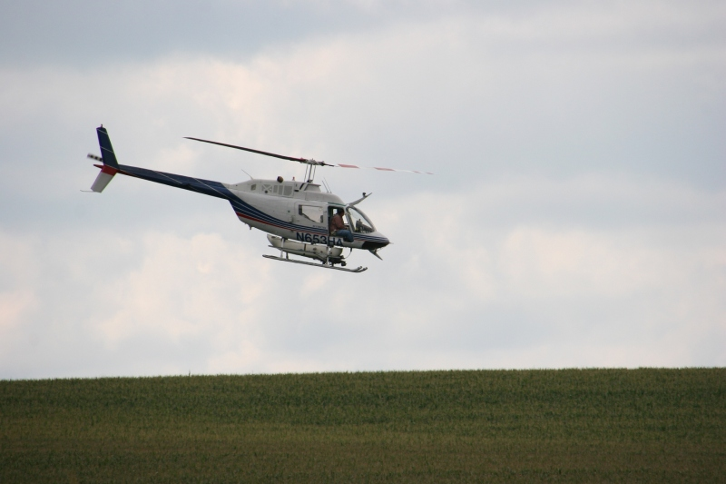 Helicopter spraying, 109 over corn field