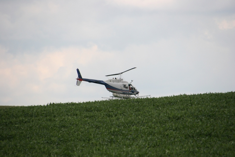 The helicopter files over a hill in the corn field.