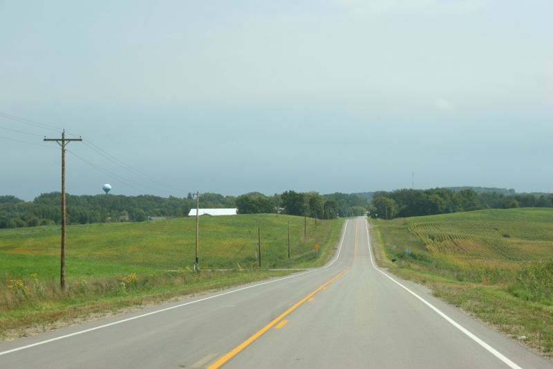 Fields line a back county road between Waterville and Elysian.
