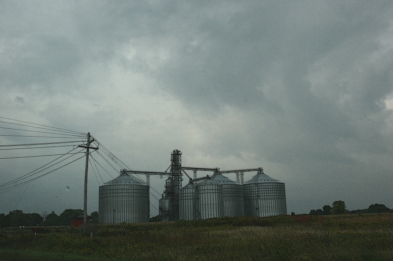 On a rainy Friday afternoon, I photographed this scene along Wisconsin Highway 21, a rural region of the state.