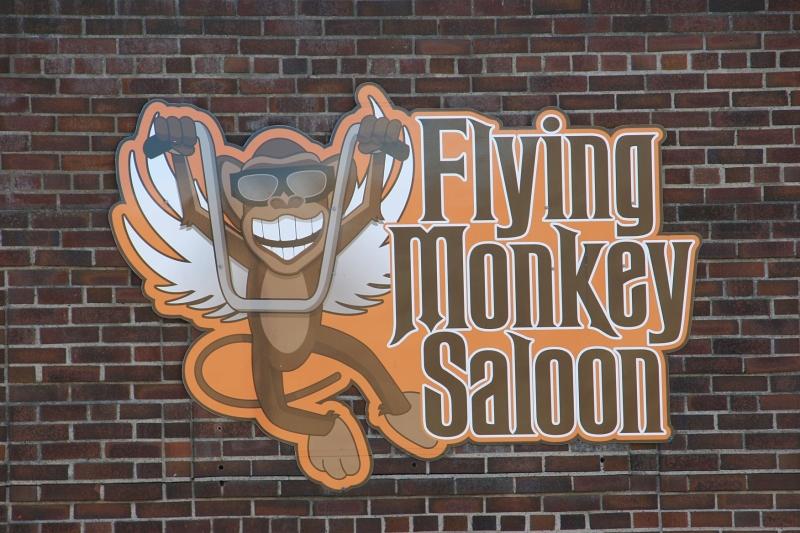 flying-monkey-saloon-17-fm-sign
