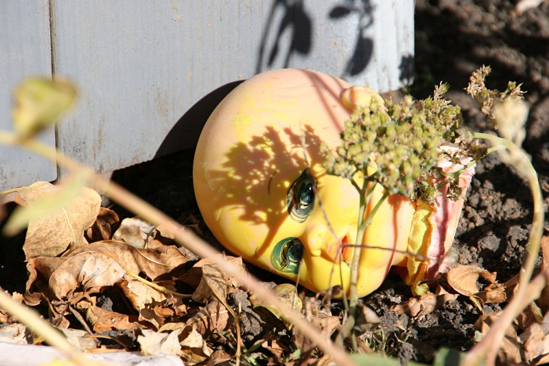 A doll's head lies next to a tombstone in a Hayfield, Minnesota, yard decorated for Halloween.