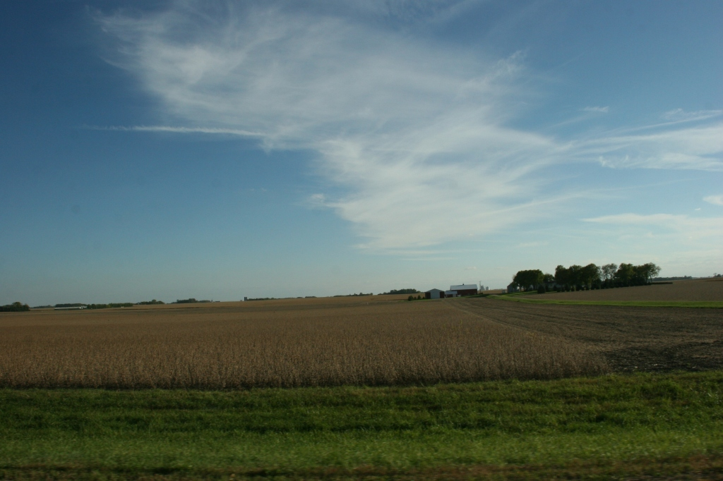 Somewhere between Morgan and New Ulm, in the middle of prime Minnesota farm land.