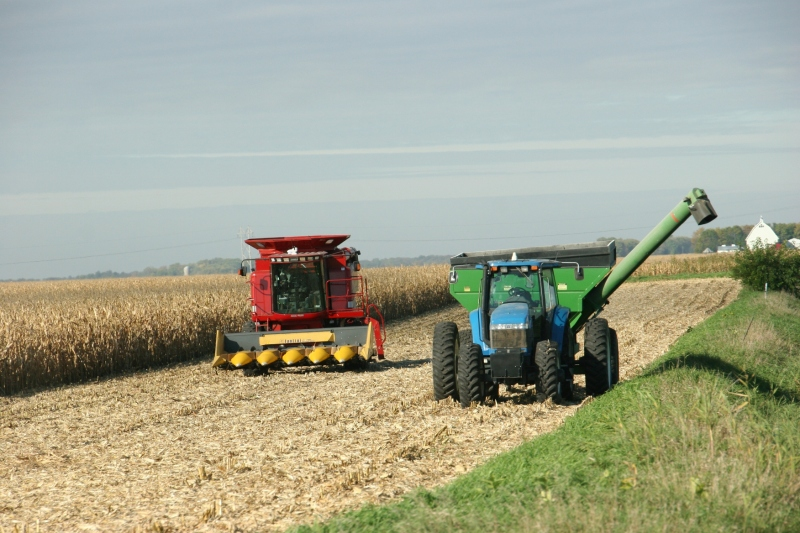 Harvesting between St. Peter and Nicollet.