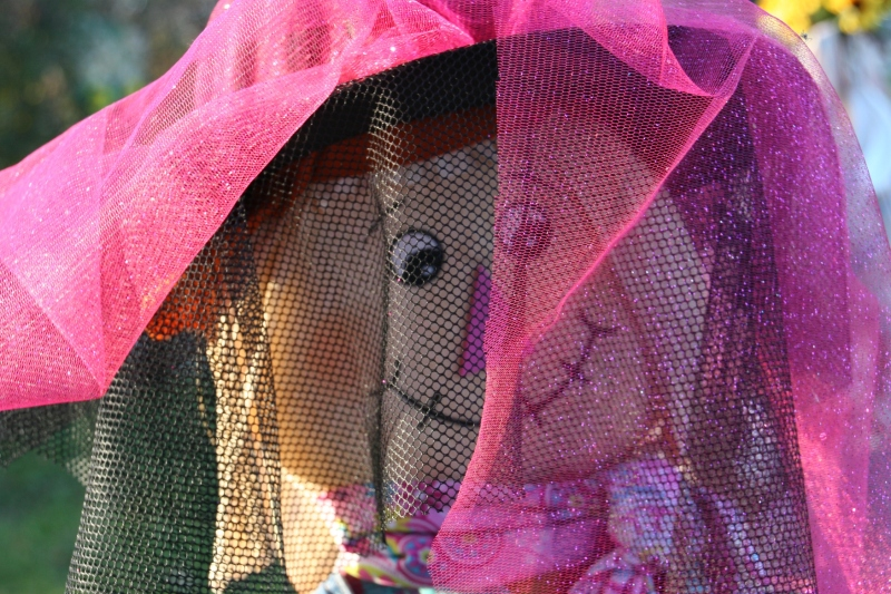 scarecrow-contest-259-veiled-scarecrow
