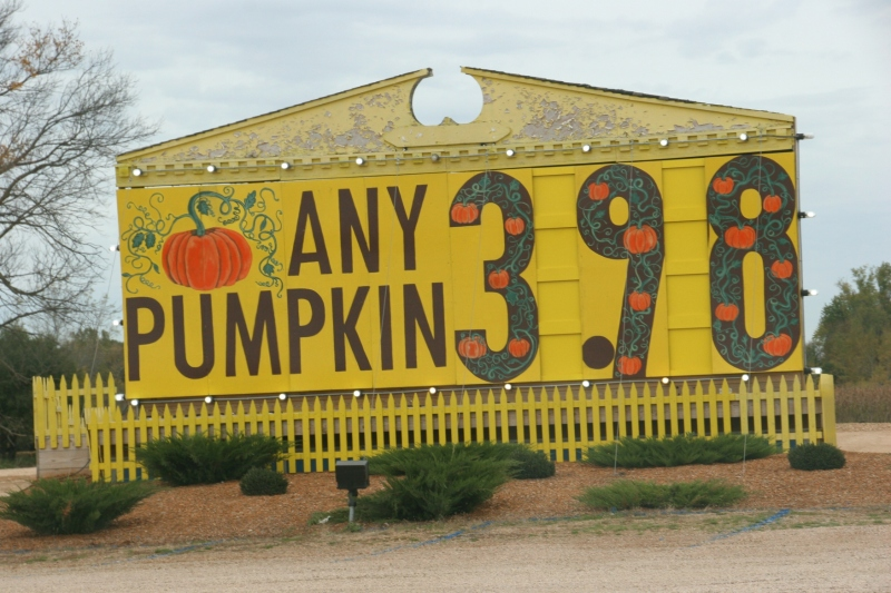 art-389-pumpkin-sign-close-up