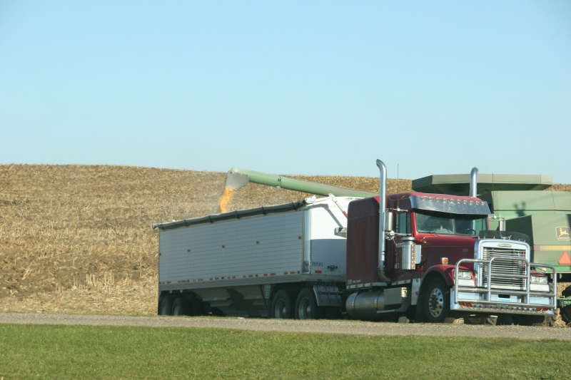 Finishing the corn harvest south of Faribault Sunday afternoon.