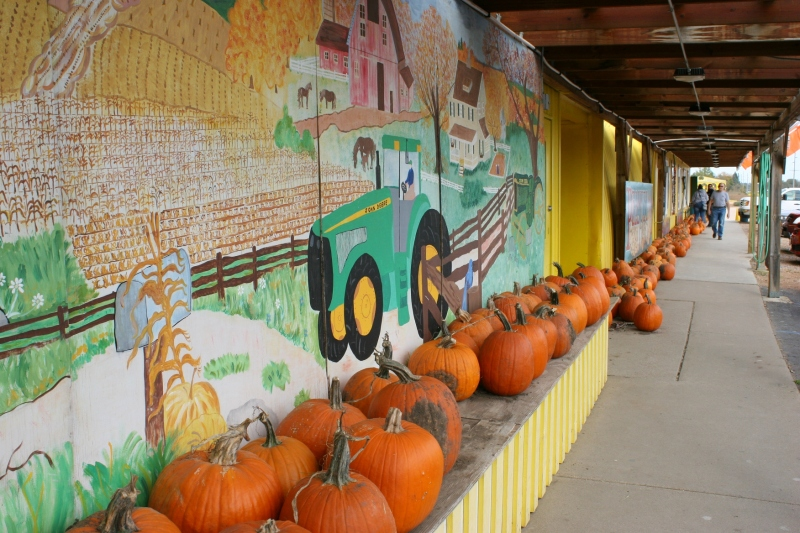 candy-store-321-pumpkins-and-mural-on-building