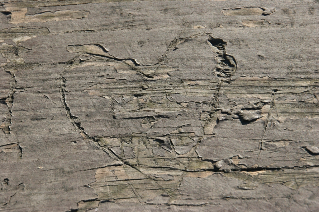 heart-carved-into-wood