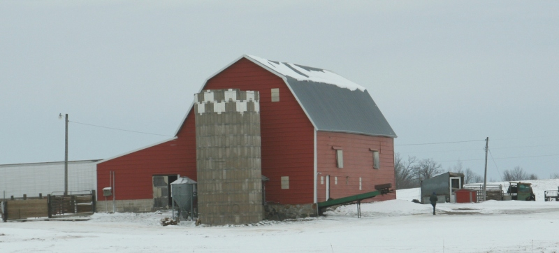 I especially appreciate the visual contrast of red barns, this one north of Gilman, against the white landscape.