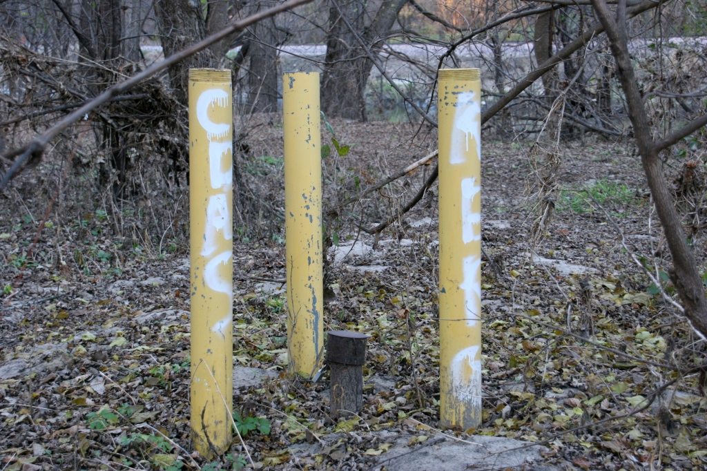 trail-22-posts-in-woods