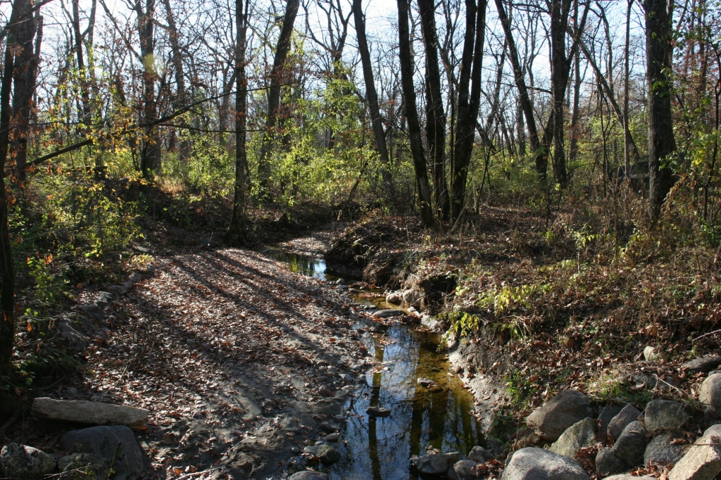 A creek in Kaplan's Woods.