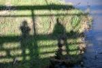 zumbro-river-225-close-up-of-shadows