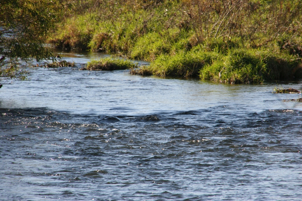 The Zumbro River in Pine Island. Minnesota Prairie Roots file photo.