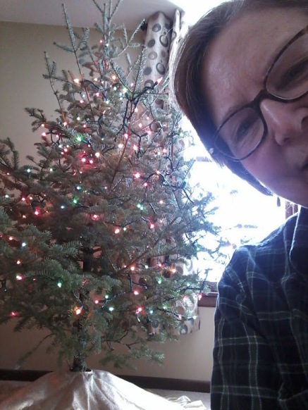 christmas-trees-audrey-by-tree