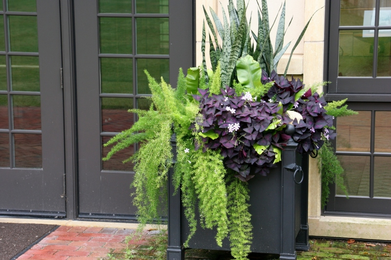 Artsy and beautiful planters abound, including this one outside the Carriage House.